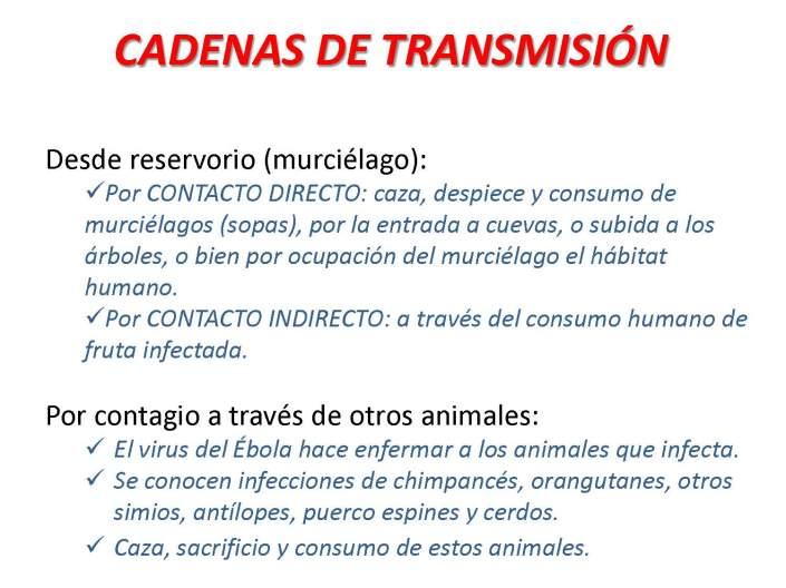07 EDUCACIÓN EBOLA_Página_07