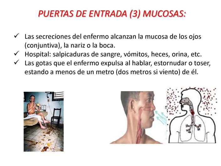 18 EDUCACIÓN EBOLA_Página_18
