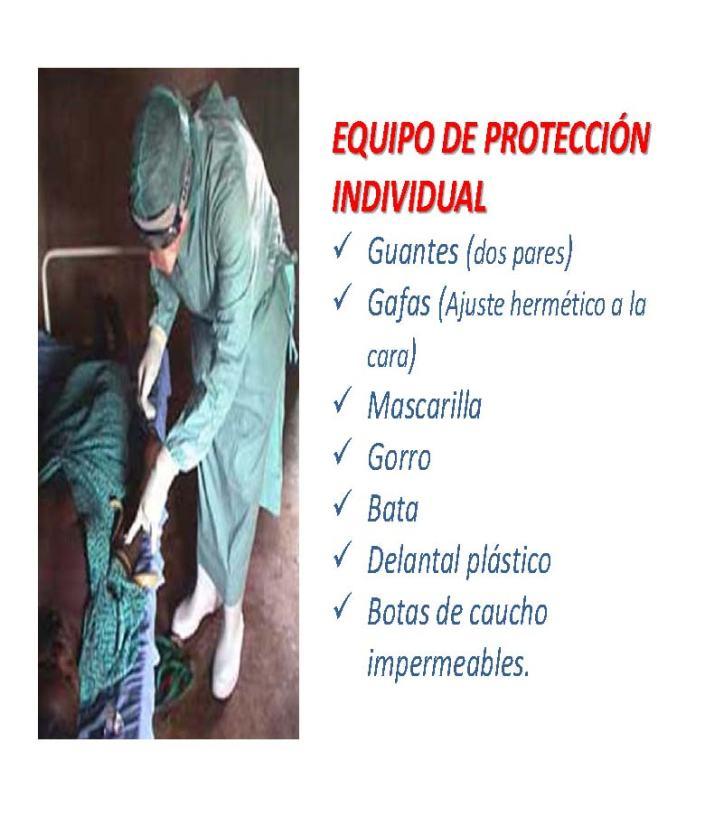 28 EDUCACIÓN EBOLA_Página_28